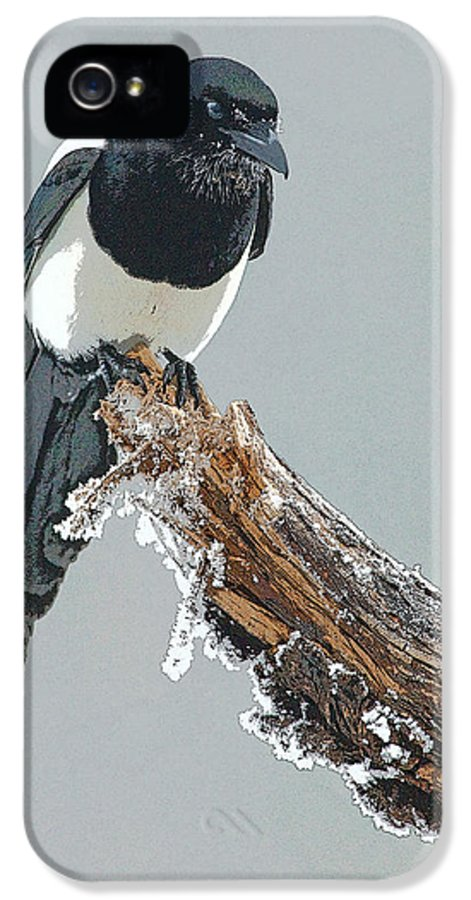Abstract IPhone 5 / 5s Case featuring the digital art Frosted Magpie- Abstract by Tim Grams