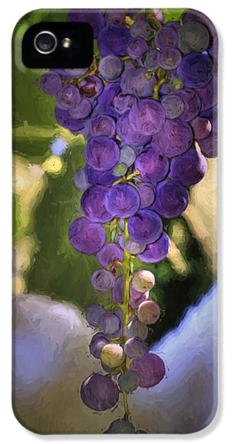 Grape IPhone 5 / 5s Case featuring the photograph Fruit Of The Vine by Donna Kennedy