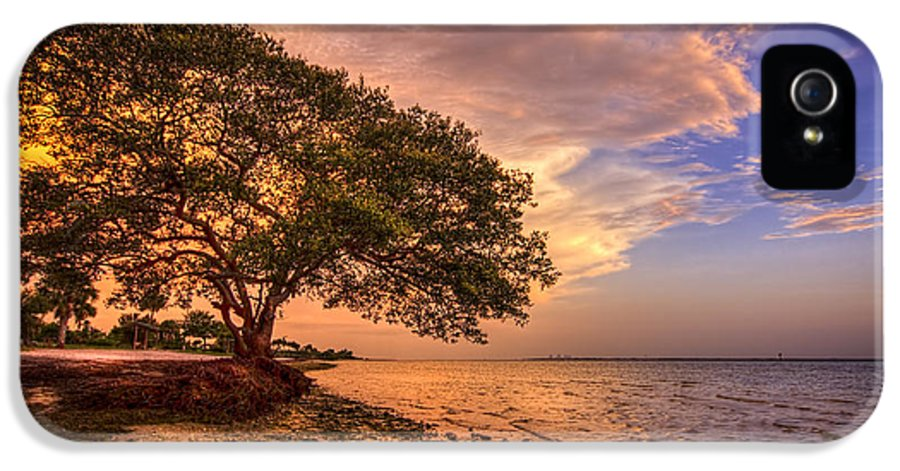 Picnic Island Park IPhone 5 / 5s Case featuring the photograph Gentle Whisper by Marvin Spates