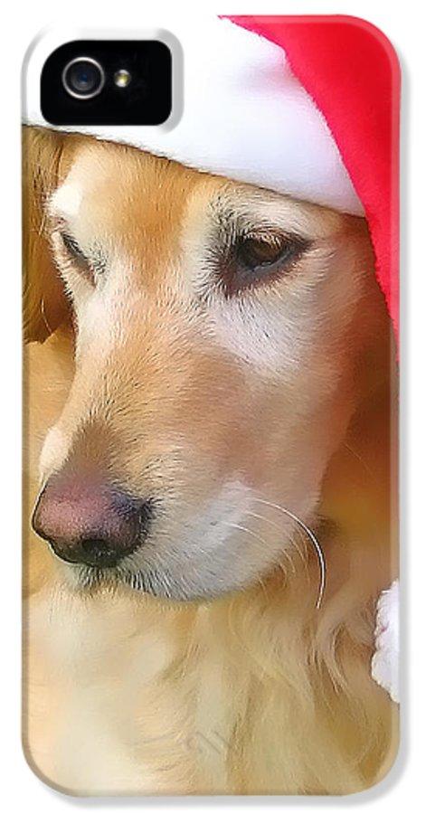 Golden Retriever IPhone 5 / 5s Case featuring the photograph Golden Retriever Dog In Santa Hat by Jennie Marie Schell