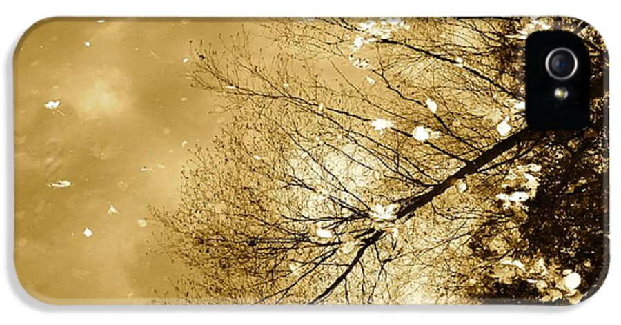 Autumn IPhone 5 / 5s Case featuring the photograph Golden Tones by Corinne Rhode