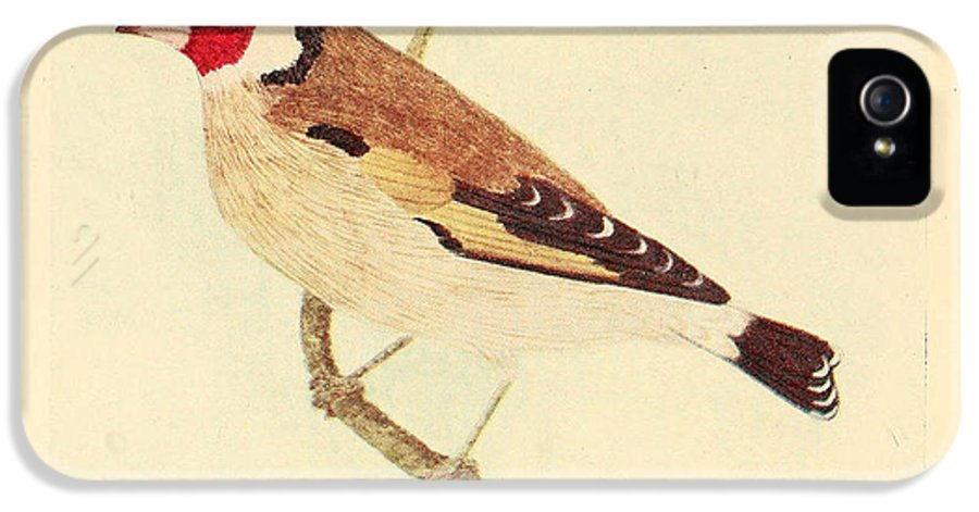 Goldfinch IPhone 5 / 5s Case featuring the painting Goldfinch by Philip Ralley