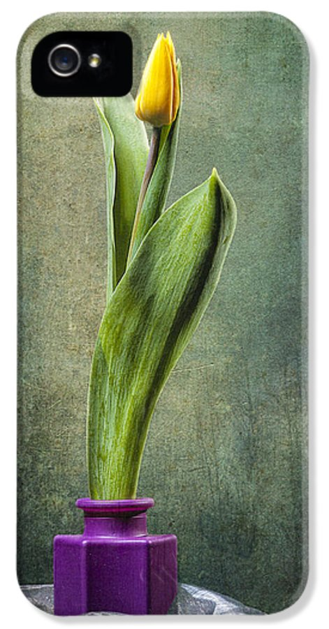 Arrangement IPhone 5 / 5s Case featuring the photograph Grunge Yellow Tulip by Erik Brede