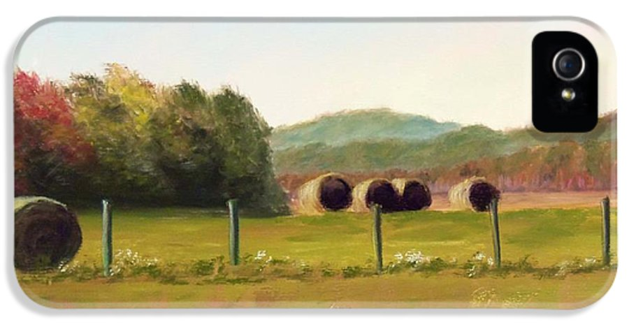 Hay IPhone 5 / 5s Case featuring the painting Hay Bales In The Cove by Joan Swanson