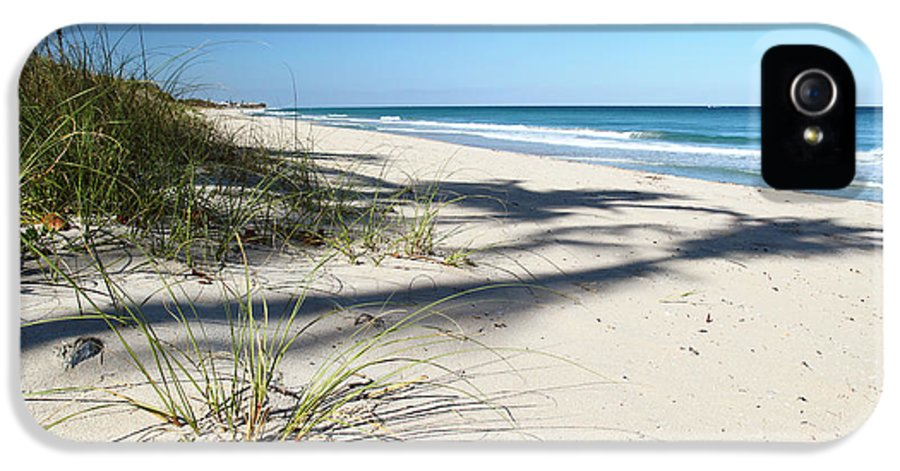 Beach IPhone 5 / 5s Case featuring the photograph Hidden Palms by Michelle Wiarda