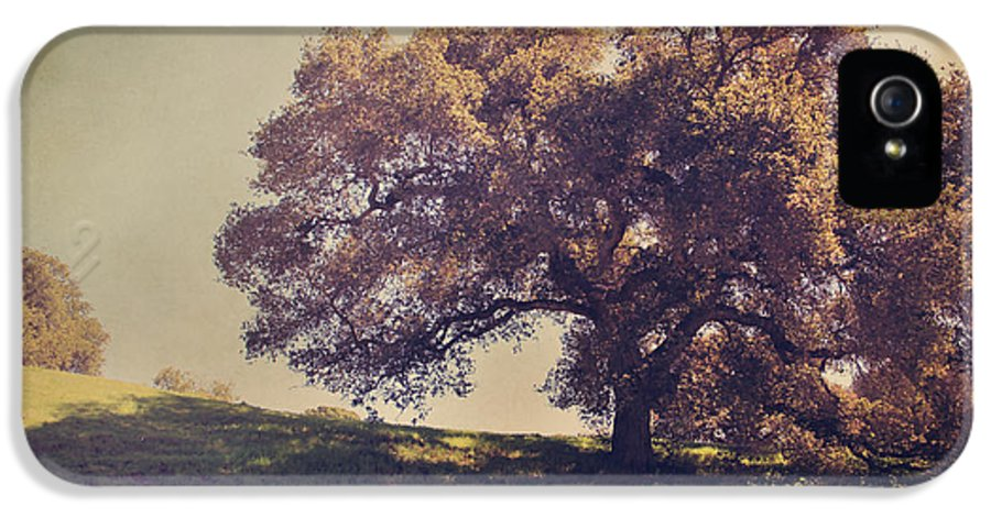 Dry Creek Hills Regional Park IPhone 5 / 5s Case featuring the photograph I Wish You Had Meant It by Laurie Search