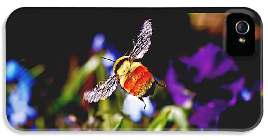 Bee IPhone 5 / 5s Case featuring the photograph In Flight by Rona Black