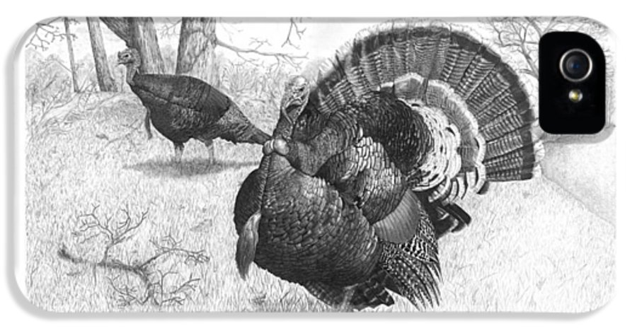 Turkey IPhone 5 / 5s Case featuring the drawing Iowa Gobbler by Cody Thorne