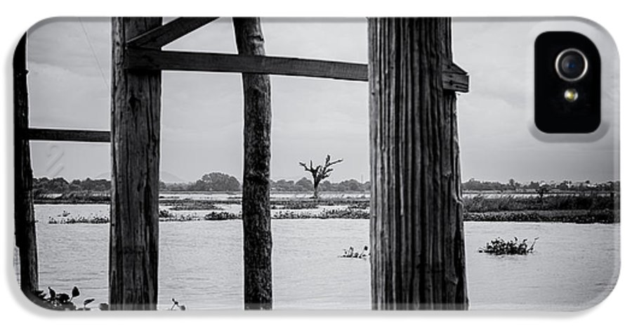 Irrawaddy IPhone 5 / 5s Case featuring the photograph Irrawaddy River Tree by Dean Harte