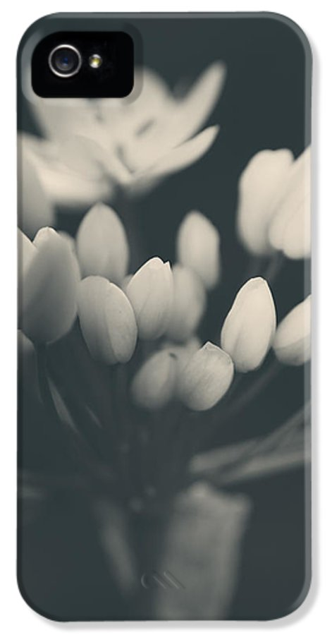 Flowers IPhone 5 / 5s Case featuring the photograph It's A New Life by Laurie Search