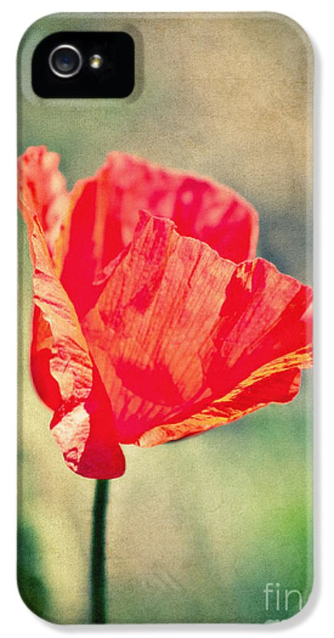 Poppy IPhone 5 / 5s Case featuring the photograph Lady In Red by Angela Doelling AD DESIGN Photo and PhotoArt