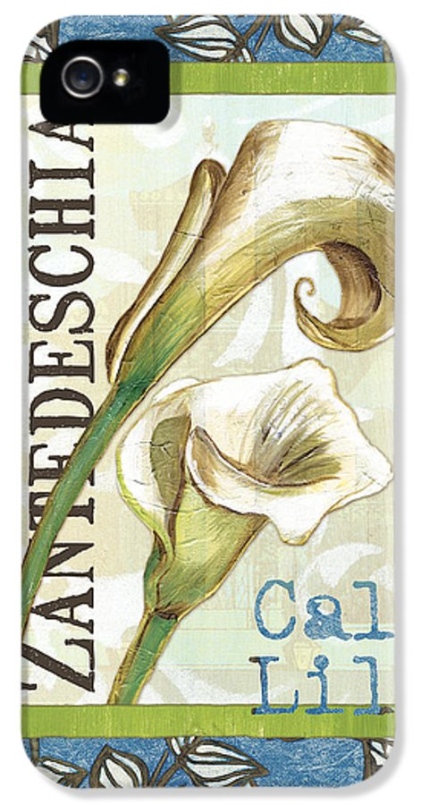 Lily IPhone 5 / 5s Case featuring the painting Lazy Daisy Lily 1 by Debbie DeWitt