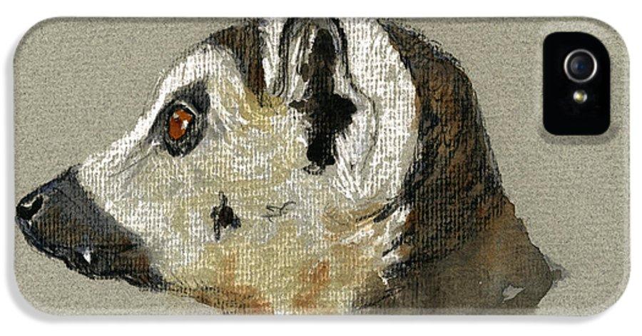 Lemur IPhone 5 / 5s Case featuring the painting Lemur Head Study by Juan Bosco
