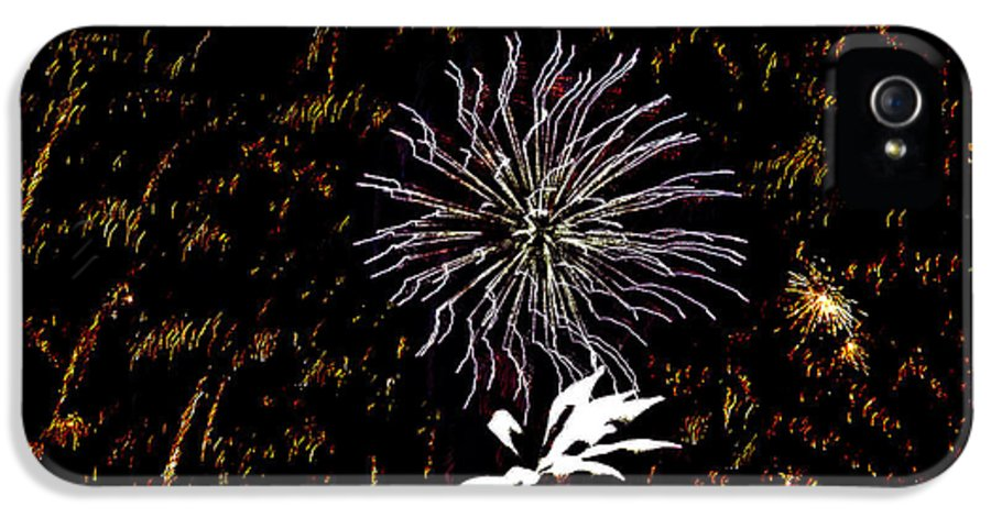 Fireworks IPhone 5 / 5s Case featuring the photograph Lighting Up The Sky by Aimee L Maher Photography and Art Visit ALMGallerydotcom
