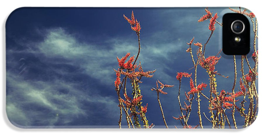 Joshua Tree National Park IPhone 5 / 5s Case featuring the photograph Like Flying Amongst The Clouds by Laurie Search