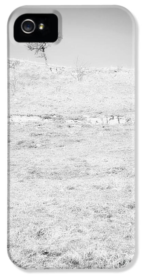 Tree IPhone 5 / 5s Case featuring the photograph Little Tree On The Hill - Black And White by Natalie Kinnear
