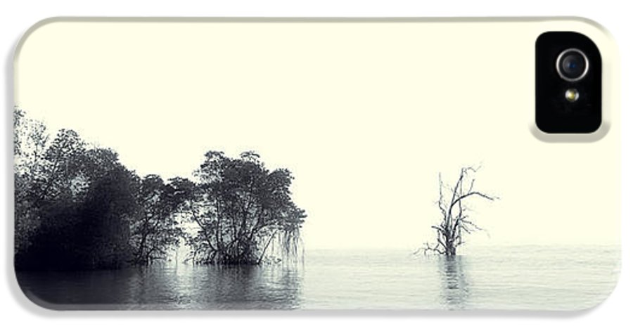 Mangrove Tree IPhone 5 / 5s Case featuring the photograph Mangrove Forest By The Sea by Ernst Cerjak