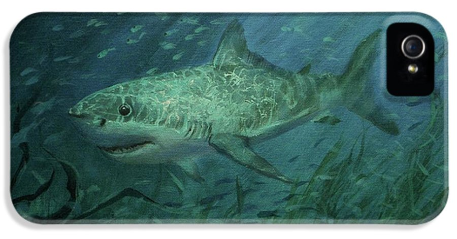 Shark IPhone 5 / 5s Case featuring the painting Megadolon Shark by Tom Shropshire