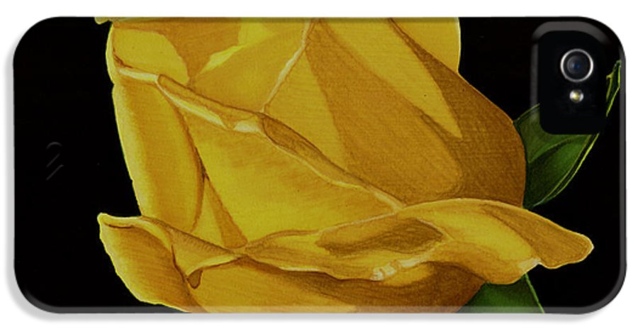 Rose IPhone 5 / 5s Case featuring the drawing Mother's Yellow Rose by Cory Still