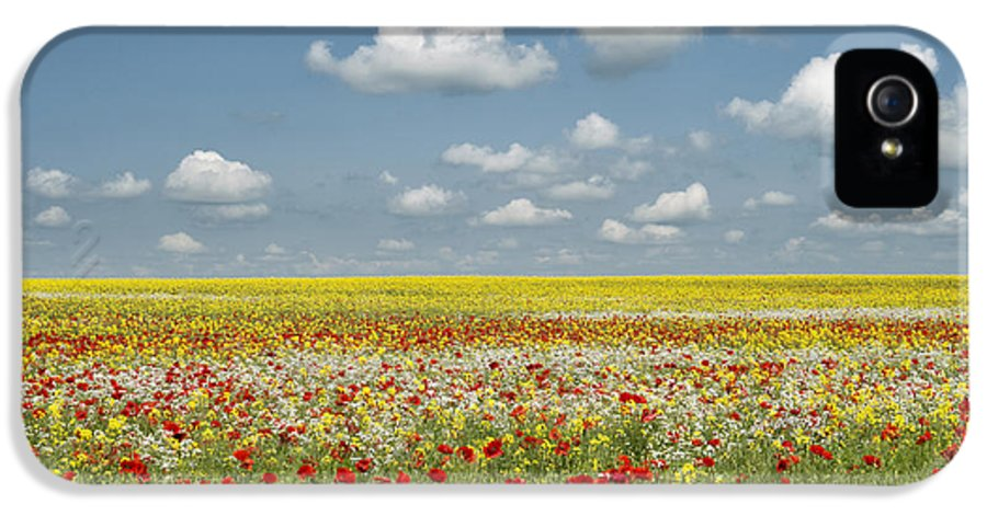 Oxfordshire IPhone 5 / 5s Case featuring the photograph Multicoloured Field by Tim Gainey