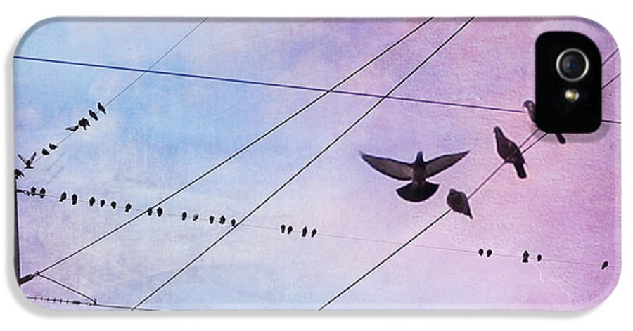 Birds On Wire IPhone 5 / 5s Case featuring the photograph Party Line by Amy Tyler