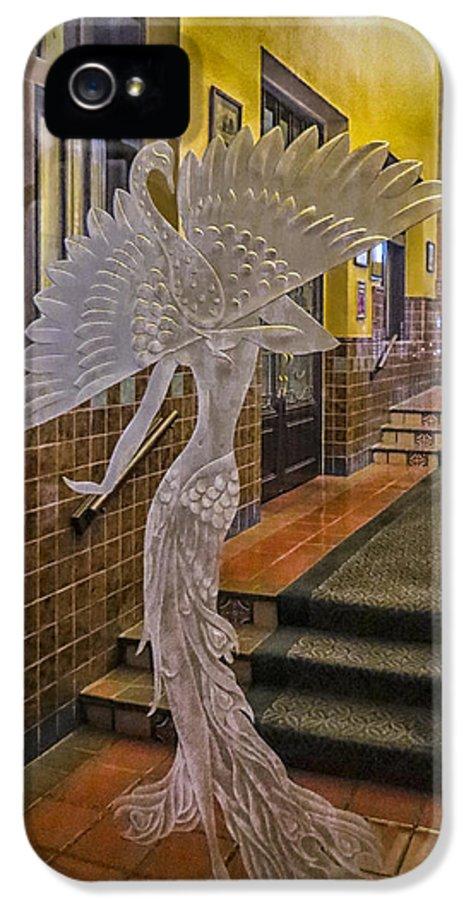 Door IPhone 5 / 5s Case featuring the photograph Peacock Room Door by Diane Wood