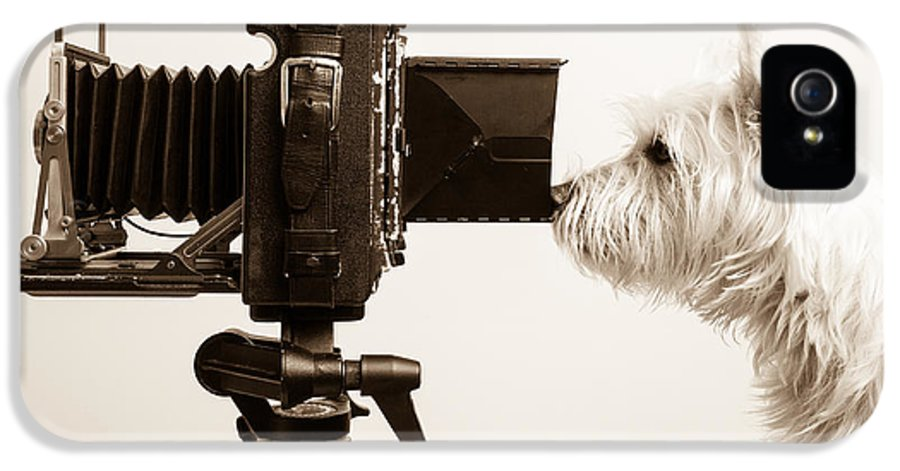 View IPhone 5 / 5s Case featuring the photograph Pho Dog Grapher by Edward Fielding
