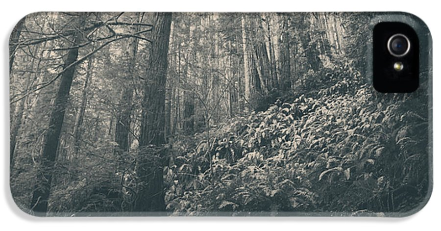 Purisima Creek Regional Park IPhone 5 / 5s Case featuring the photograph Pretty Darling Do Not Cry by Laurie Search