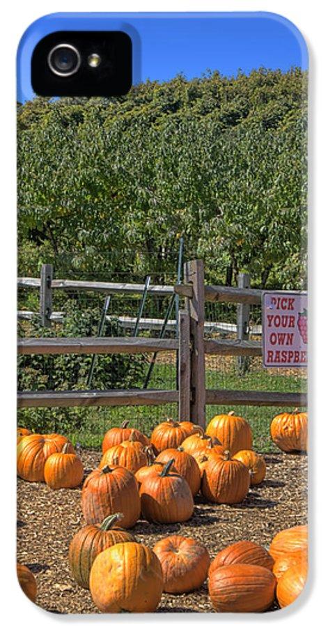 Pumpkin IPhone 5 / 5s Case featuring the photograph Pumpkins On The Farm by Joann Vitali