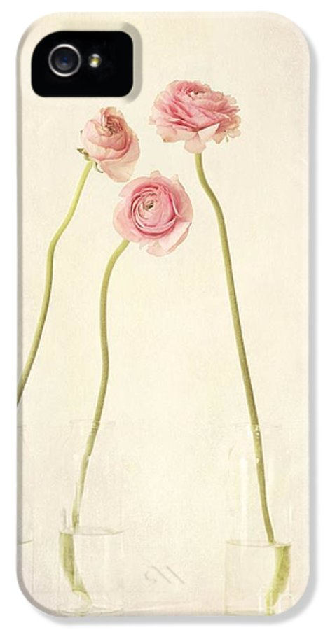 Still Life IPhone 5 / 5s Case featuring the photograph Renoncules by Priska Wettstein
