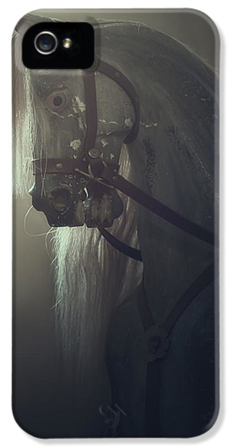 Horse IPhone 5 / 5s Case featuring the photograph Rocking Horse by Joana Kruse
