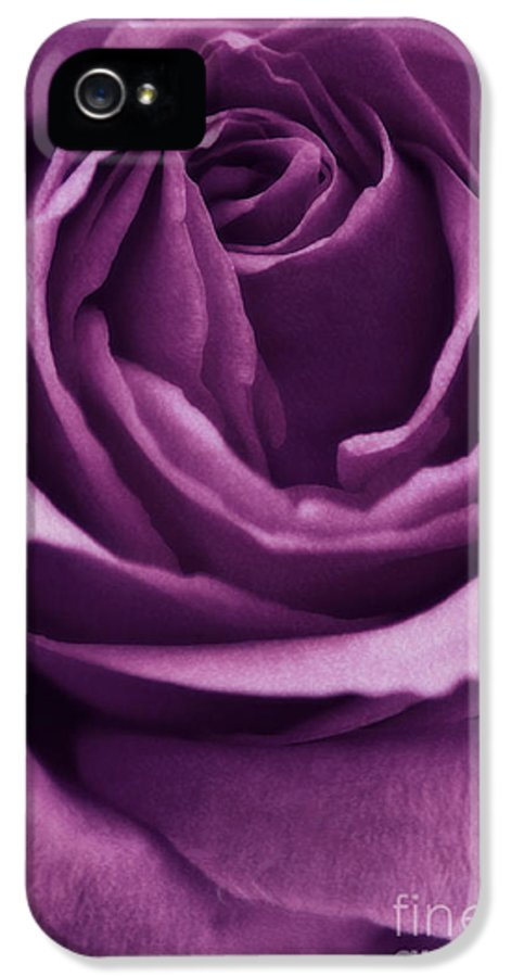 Rose IPhone 5 / 5s Case featuring the photograph Romance IIi by Angela Doelling AD DESIGN Photo and PhotoArt