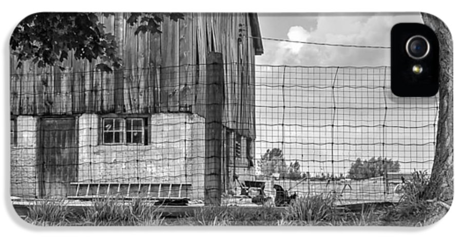 Barn IPhone 5 / 5s Case featuring the photograph Rooster Turf Monochrome by Steve Harrington