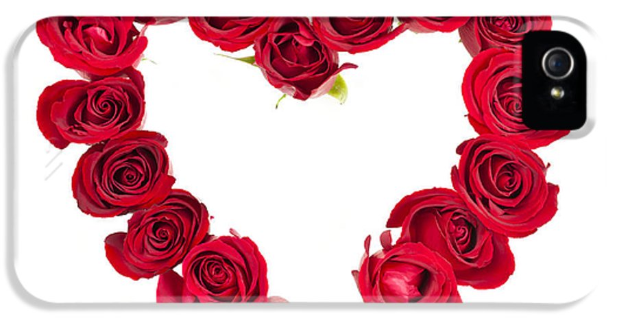 Rose IPhone 5 / 5s Case featuring the photograph Rose Heart by Elena Elisseeva