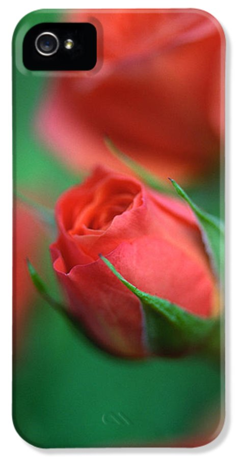 Florals IPhone 5 / 5s Case featuring the photograph Rosebud by Kathy Yates