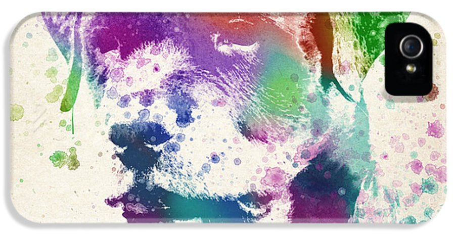 Rottweiler IPhone 5 / 5s Case featuring the drawing Rottweiler Splash by Aged Pixel