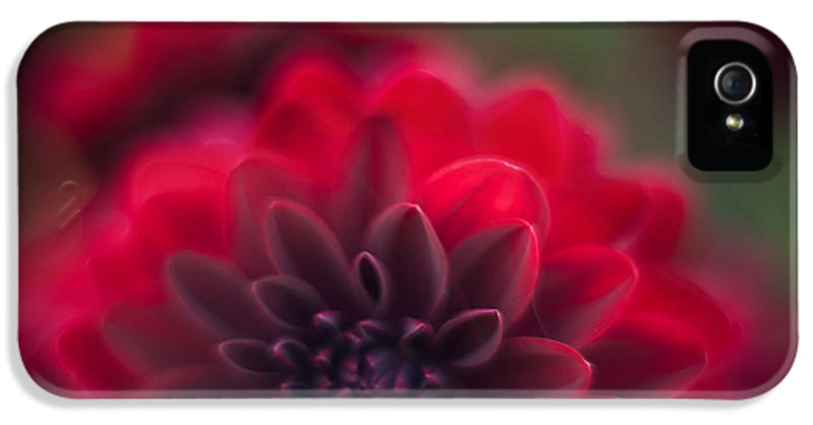 Dahlia IPhone 5 / 5s Case featuring the photograph Rouge Dahlia by Mike Reid