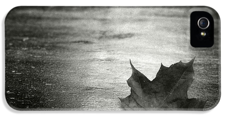 Leaf IPhone 5 / 5s Case featuring the photograph Rue Malebranche by Taylan Apukovska