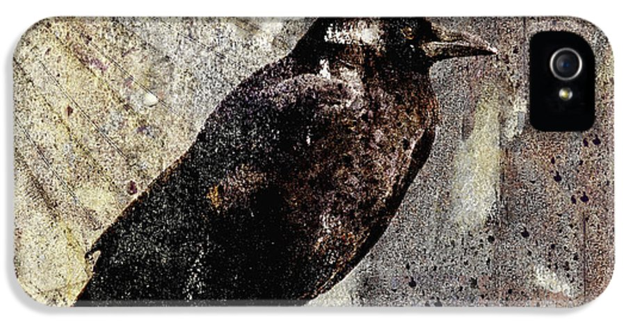 Crow IPhone 5 / 5s Case featuring the photograph Same Crow Different Day by Carol Leigh