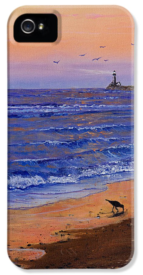 Ocean IPhone 5 / 5s Case featuring the painting Sandpiper At Sunset by C Steele