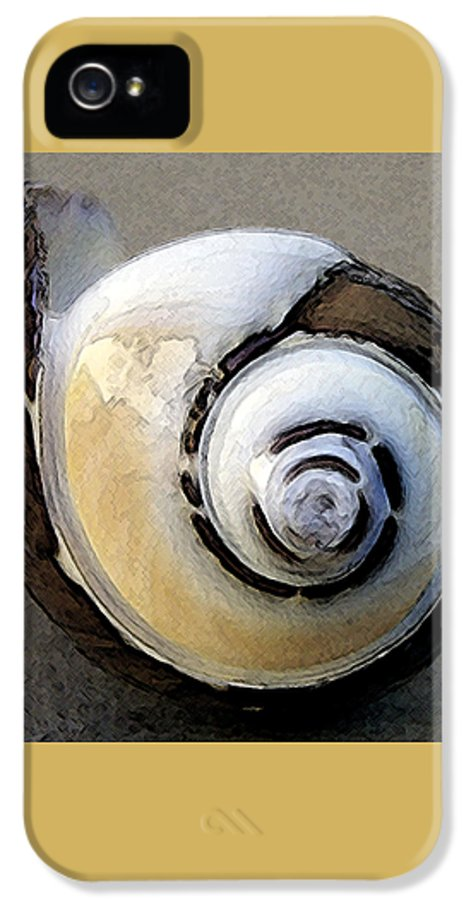 Seashell IPhone 5 / 5s Case featuring the photograph Seashells Spectacular No 3 by Ben and Raisa Gertsberg