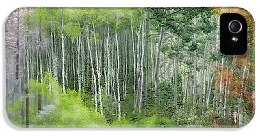 Aspen IPhone 5 / 5s Case featuring the mixed media Seasons Of The Aspen by Carol Cavalaris