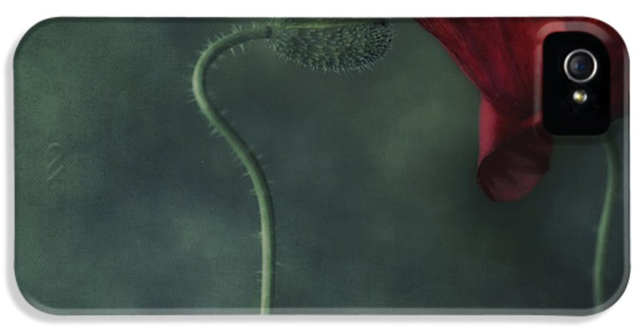 Poppy IPhone 5 / 5s Case featuring the photograph Secret Affair by Priska Wettstein
