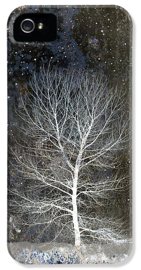 Silent Night IPhone 5 / 5s Case featuring the photograph Silent Night by Carol Leigh