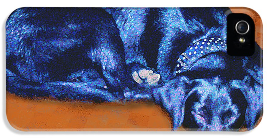 Dog IPhone 5 / 5s Case featuring the mixed media Sleeping Blue Dog Labrador Retriever by Ann Powell