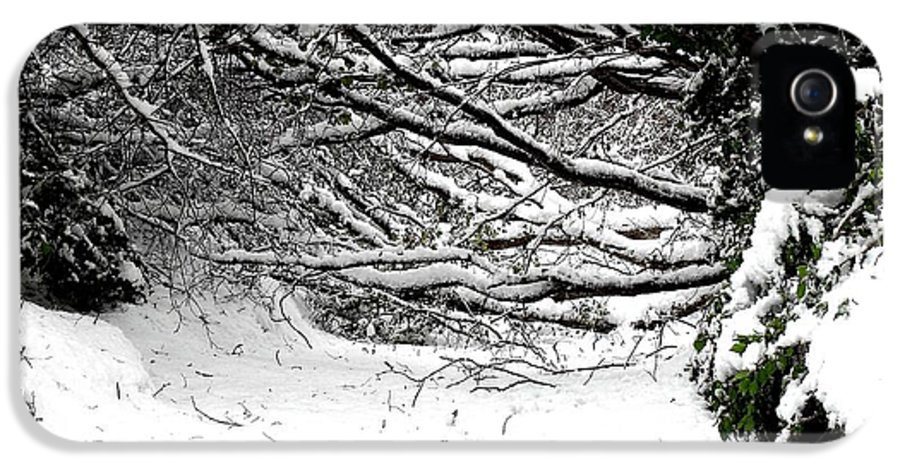 Snow Scene IPhone 5 / 5s Case featuring the photograph Snow Scene 5 by Patrick J Murphy