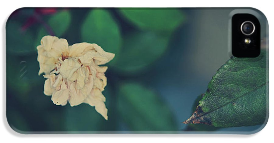 Nature IPhone 5 / 5s Case featuring the photograph So It's Goodbye To Love by Laurie Search