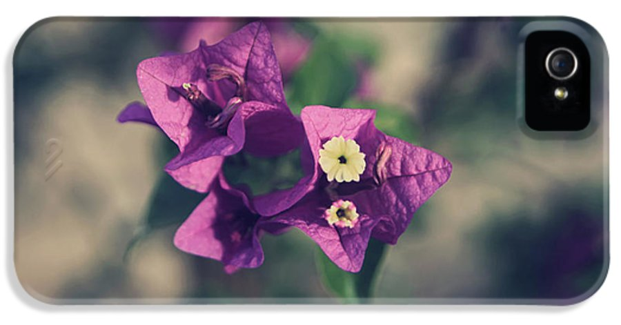 Flowers IPhone 5 / 5s Case featuring the photograph So Real That It Makes Me Wanna Cry by Laurie Search
