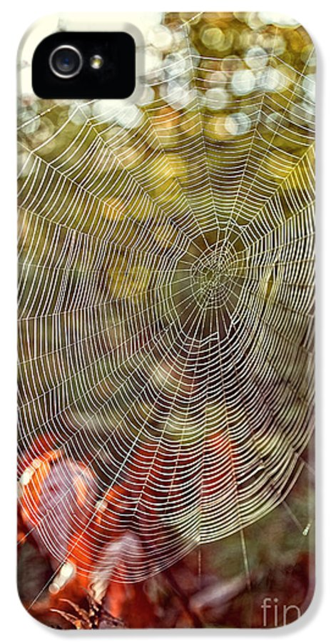 Background IPhone 5 / 5s Case featuring the photograph Spider Web by Edward Fielding