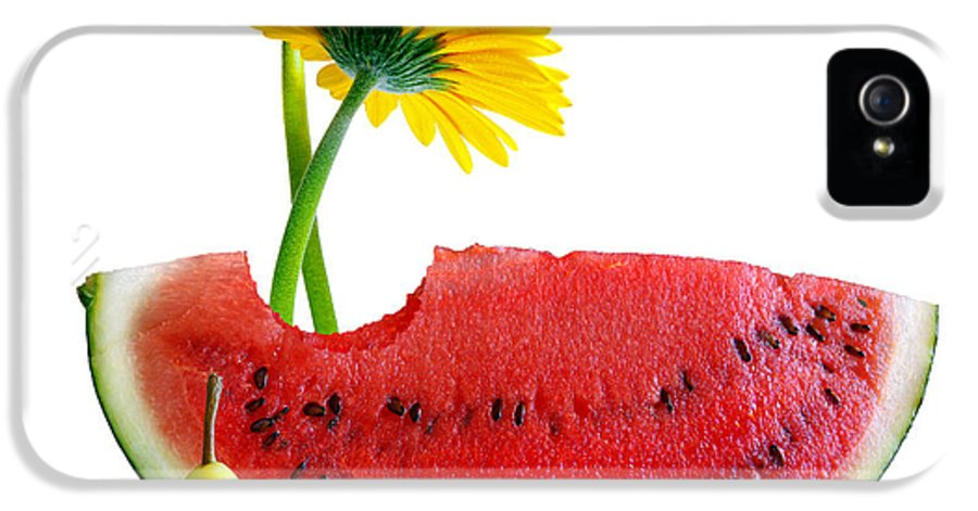 Arrangement IPhone 5 / 5s Case featuring the photograph Spring Watermelon by Carlos Caetano